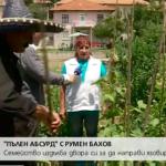 АБСУРД по БЪЛГАРСКИ: Семейство изскуба боба и изкопа язовир в двора си!