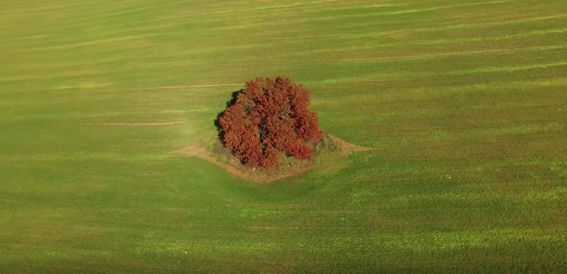 ИЗУМИТЕЛНО! Красотата на България през ЕСЕНТА, заснета с дрон! (ВИДЕО)