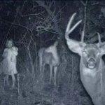 14 ужасяващи кадри, заснети от камерите на ловци (СНИМКИ)