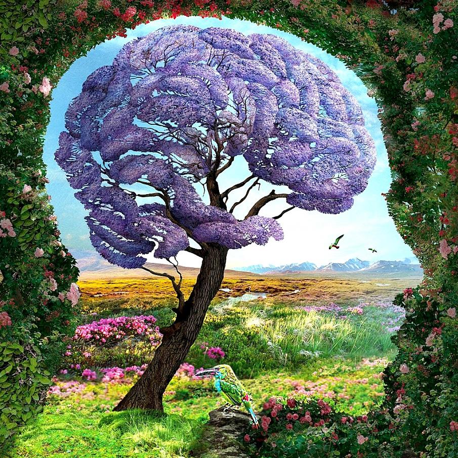 ТЕСТ: Първата фигура, която видите, разкрива най-дълбоките тайни на душата ви