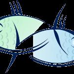 Риби: най-неразгадаемата зодия. Често крият истинските си чувства