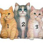 Изберете едно от тези три котенца и вижте какво ще разкрие то за вашия характер
