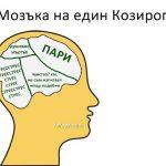 Какво се случва в главата на всяка зодия?
