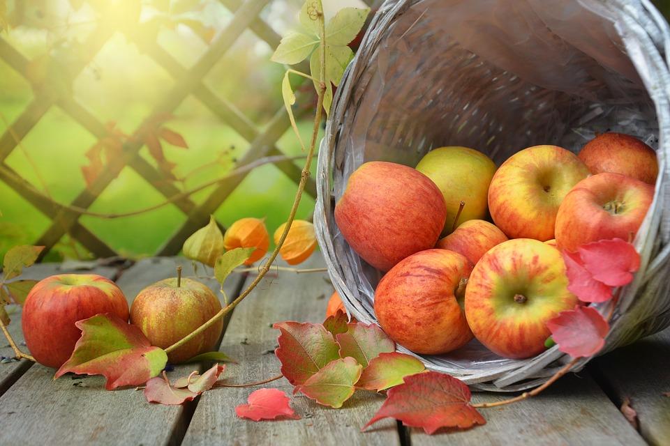 5 изумителни храни, които пречистват организма по-добре от всяко лекарство
