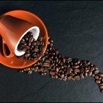 3-4 кафета на ден вършат чудеса, ето от какво предпазват