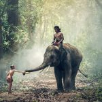 Духовни уроци от Индия, които непременно трябва да прочетете