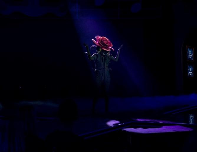 Розата